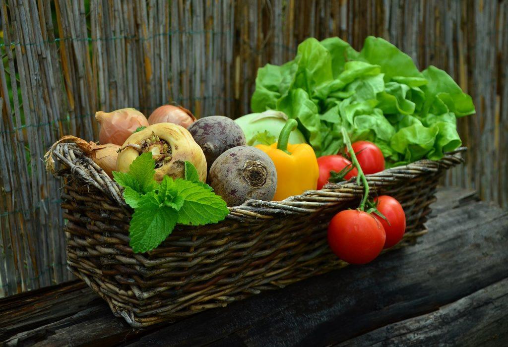 Agricultura biológica - quais os benefícios e os motivos para consumir produtos biológicos?